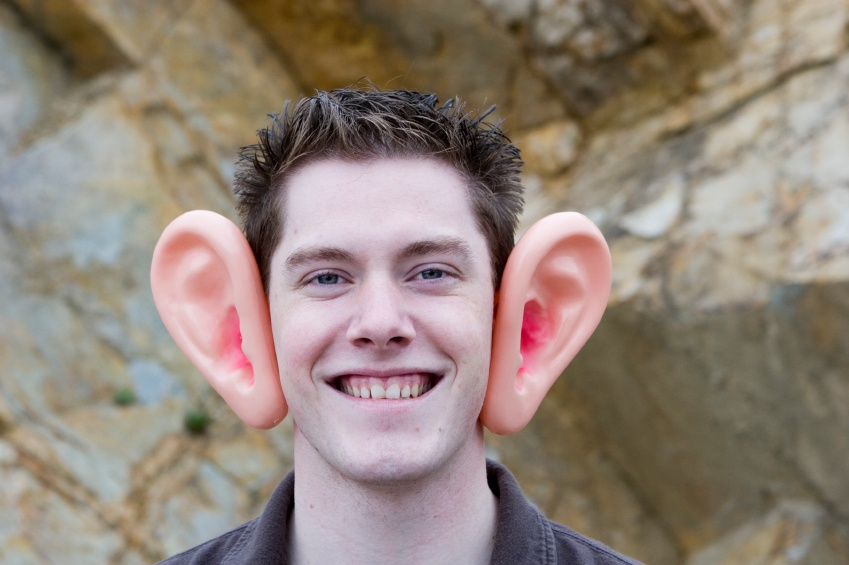 фото с большими ушами носом и зубами тектонике